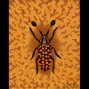 "Cerembycidae Aristobia - 24"" x 30"" Acrylic on Canvas 2009"