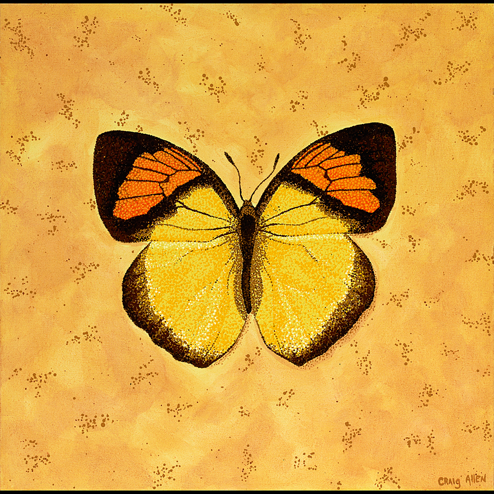"Yellow Orange Tip - 24"" x 24"" Acrylic on Canvas 2009"