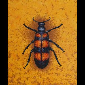 """Blister Beetle - 24"""" x 30' Acrylic on Canvas"""