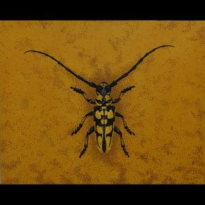 "Long Horned Wood Boring Beetle - 24"" x 30"" Acrylic on Canvas"