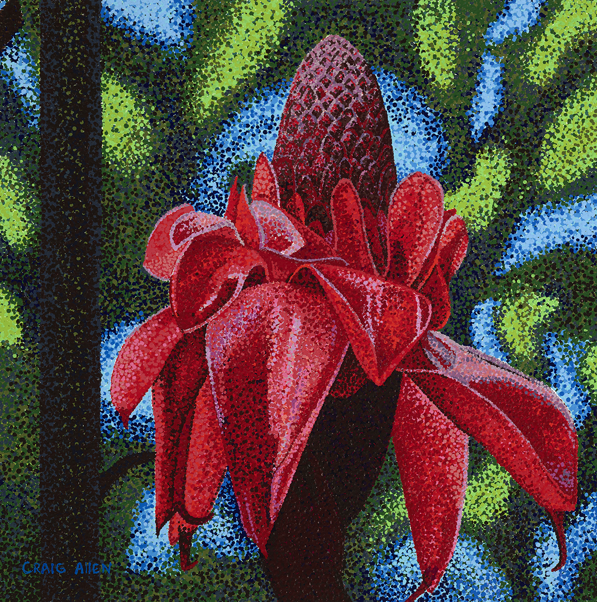 "Flower; Torch Ginger - 20"" x 20"" Acrylic on Canvas"
