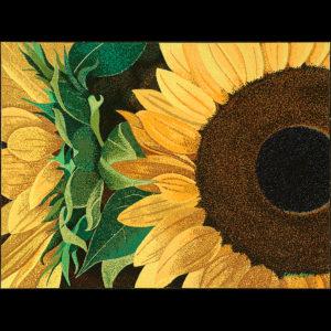 """Sunflower Sutra # 2 - 30"""" x 40"""" Acrylic on Canvas 2014"""