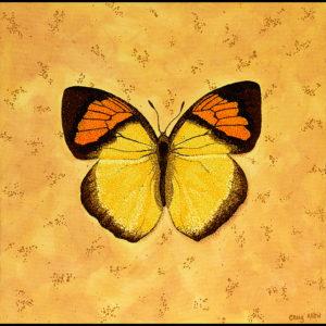 "Yellow Orange Tip - 24"" x 24"" Acrylic on Canvas 2009"