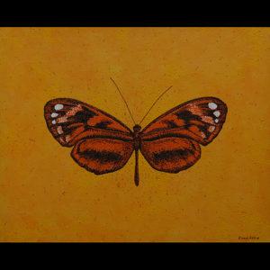 "Hyposcada - 24"" x 30"" Acrylic on Canvas"