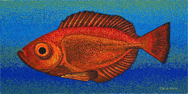 """Fish; Hawaiian Bigeye - 12"""" x 24"""" Acrylic on Canvas"""